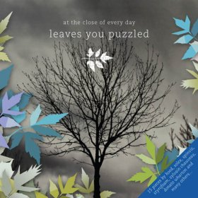 At The Close Of Every Day - Leaves You Puzzled [CD]