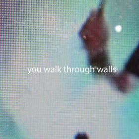 You Walk Through Walls - You Walk Through Walls [Vinyl, LP]
