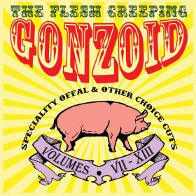 Andrew Liles - The Flesh Creeping Gonzoid (Box) [6CD + DVD]