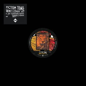 "Pictish Trail - Who's Coming In [Vinyl, 12""]"