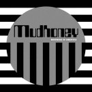 Mudhoney - Morning In America (Silver / Loser Edition)