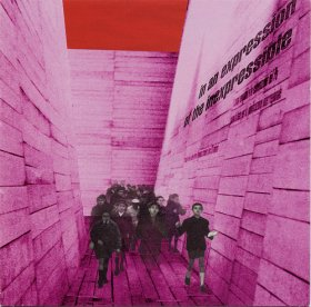 Blonde Redhead - In An Expression Of The Inexpressible [Vinyl, LP]