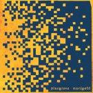 Pinegrove - Marigold (Marigold Yellow)