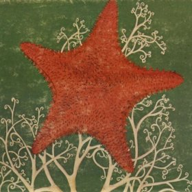 Blithe Sons - Arm Of The Starfish [CD]