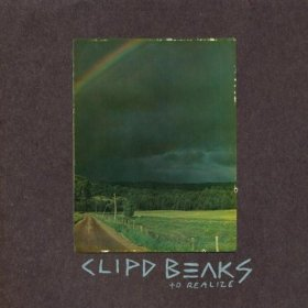 Clipd Beaks - To Realize [CD]