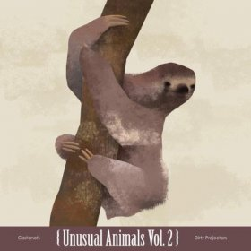 "Castanets / Dirty Projectors - Unusual Animals Vol. 2 [Vinyl, 10""]"