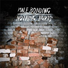 Male Bonding - Nothing Hurts [Vinyl, LP]