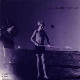 Flies Inside The Sun - An Audience Of Others [CD]